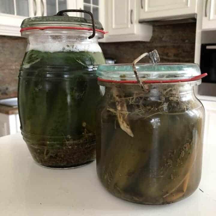 Polish 3-Day Pickles Ogorki Malosolne Recipe
